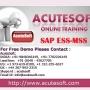 SAP ESS-MSS Online Training at Acutesoft | Online SAP ESS-MSS