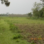 Best Proposal for Sale Commercial Land in Alipurduar
