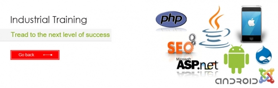 Web design, web design, placement training- parkhya solutions