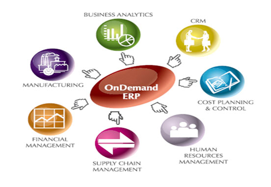 Erp services provide in india