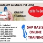 SAP Basis Online Training | Online SAP Basis