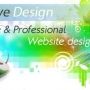 Free Professional Website Design!