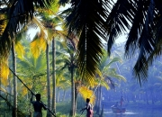Kerala tour packages starting from inr 7,999 onwards