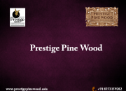 Http://prestigepinewood.asia/
