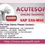 SAP ESS-MSS  | Online SAP ESS-MSS