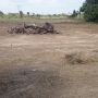 Land Near ECR of 7400 Sq.ft ( 17 Cents ) for Rs. 14.5 Lakhs in Poonthandalam,