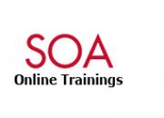 Best online oracle soa suite training -delhi