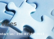 Costs-Saving Is Intellectual with Aldiablos Infotech Pvt Ltd KPO Services