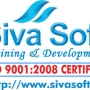 URGENT REQUIREMENT FOR WEBDESIGNING TEACHING FACULTY