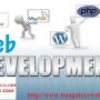 Bangalore web Design Company