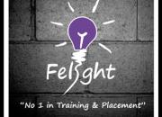 Felight Training Institute in Bangalore, Felight