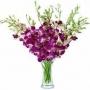 Florist in gurgaon, online florist in gurgaon