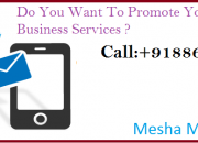 Promote your business services and generate lead using sms marketing