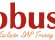The best training institute for SAP courses in Hyderabad - Globus IT