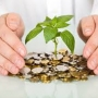 Safe and secure investment guaranteed at about 28.5 time per year