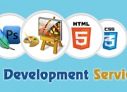 Website Design and Web Development Company in Bhiwani, TechFid Service