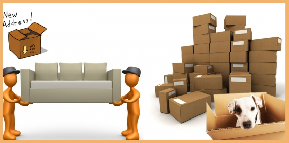 Pictures of Packers and movers best services in bangalore-toppm 2