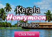 Munnar Honeymoon Package.  Ex Chennai with Train Tickets.