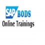 sap bods online training institute from hyderabad