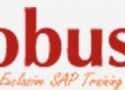 The best training institutes for SAP courses in Hyderabad - Globus IT