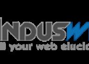 Dynamic website designing services - induswebi technologies