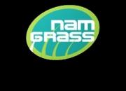 Artificial grass lawn make home outdoor esthetically pleasing