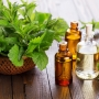 Organic Essential Oils and High Quality Mint Products