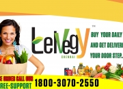 Telvegy online grocery store