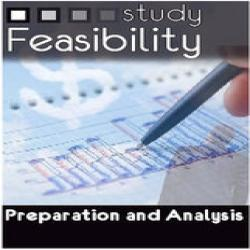 Feasibility study & consultancy to/before buy & sell business