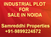 Industrial Land For Sale in Hosiery Complex Noida