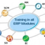 Best ERP Training Institute in Noida (Delhi NCR)