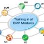 Best ERP Training Institute in Noida (Delhi NCR)