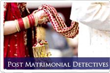 Pre - metrimonial detective