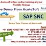 SAP SNC Online Training | SAP SNC Course