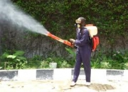Termite Control Gurgaon- Get additional 10% discount