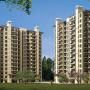 Emaar Palm Spring Sector-54 Gurgaon/9650344331