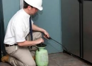 Pest control noida- 100% odorless treatment