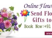 Flowers Garden in Rohini Delhi