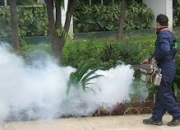Pest Control Delhi- Leave your tension for pests