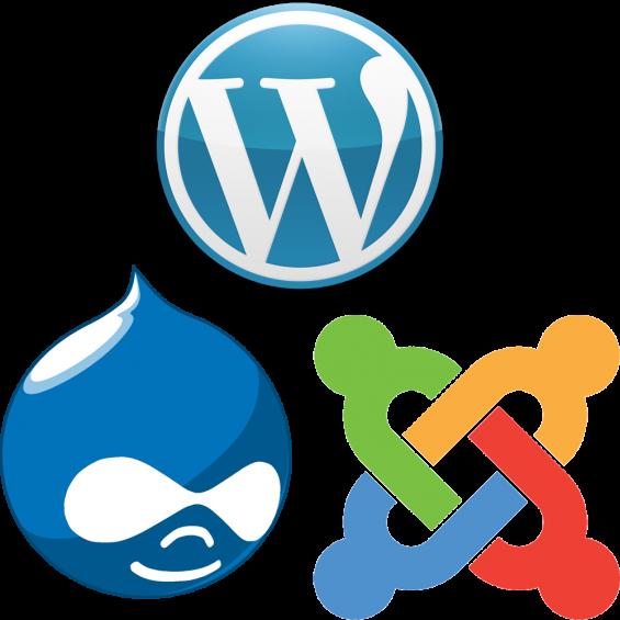 Web designing and application development company .