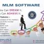 Multilevel Marketing- MLM Website Design