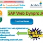 SAP Web Dynpro JAVA Course| SAP Web Dynpro JAVA Online Training