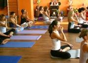 Yoga Teacher Training Program 1st June to 30th June 2015(YTT329)