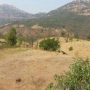 Agriculture land for sale Only 15 Rs. PSF