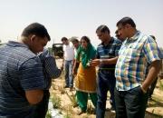 Medicinal plant's cultivation training program at pink city jaipur