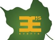 Wedding Party Planner in Delhi NCR - 3Es Events
