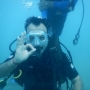 Scuba dive in andamans