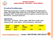 DTCP Approved plot in  rajulapalem, tirupathi
