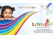 Allow Your Kids Learn to Learn in Little Oaks Primary School