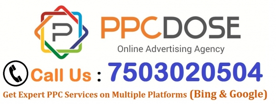 Google ppc expert for tech support
